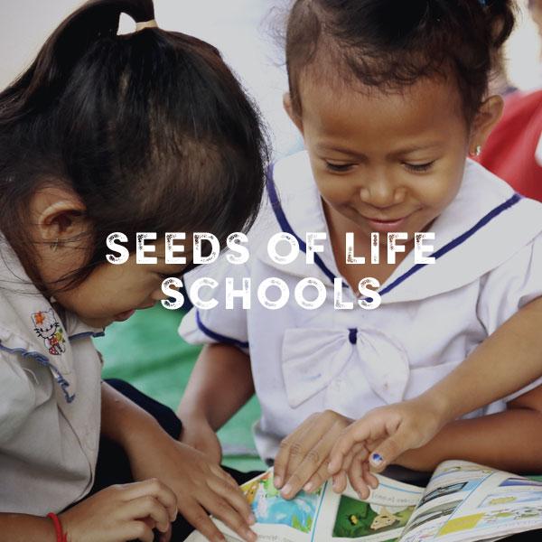 seedssquare